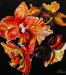 "#260, Orchids I, 9""x10"", water colour, $215.00"