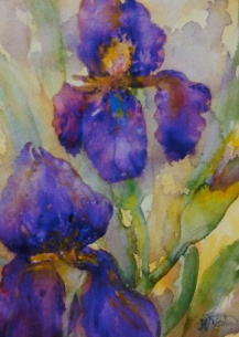 "#367, Purple irises I, 9""x12"", w/c, $175.00"