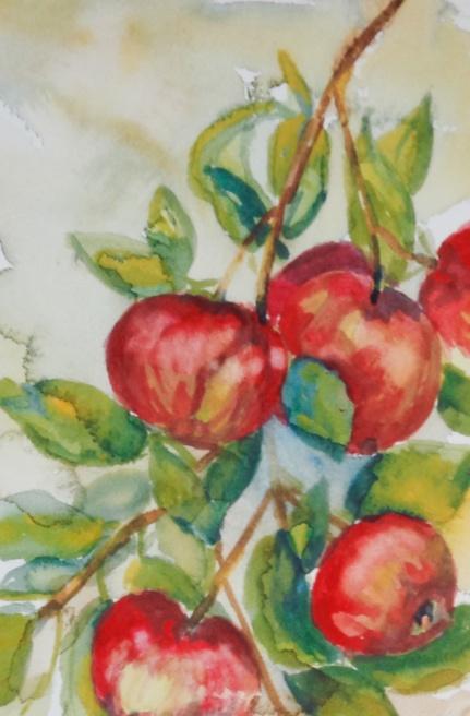 """#407, Pommes en septembre, 7""""x9"""", w/c, $85.00"""