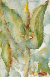 "#412, Waterplants, 6""x9"", w/c, $95.00"