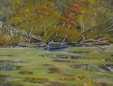 "#330, Startree, Opeongo, oil on canvas, 18""x24"", $530.00"