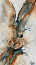 """Lapin X Study, 7""""x11.5"""", watercolour"""